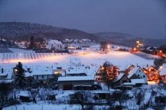 x-Winter-Gleiszellen1402